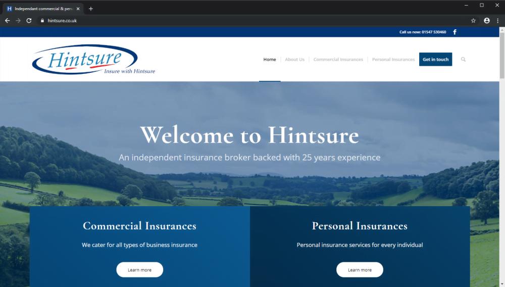 Hintsure Insurance brochure website
