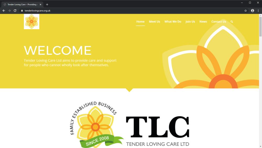 Tender Loving Care brochure website screenshot Yellow branding
