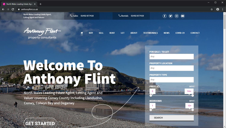 Anthony Flint Website Design Example